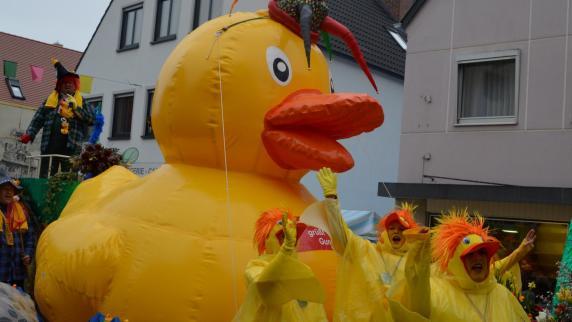 Gundelfingen: Fast hätte die Ente schwimmen können