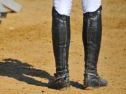 "Pferdesport: Zoltinger Amazonen ""räumen ab"""