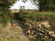 Umwelt: Eine Chance für naturnahe Bäche