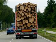 Mödingen: Langholzzug bleibt an Haus hängen
