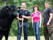 Viehzucht: Für Proud Tyler geht es jetzt nach Irland