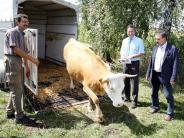Dattenhausen: Diana und Linda genießen ihr neues Zuhause