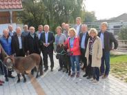 Tiere: Mit Eseln und Ponys therapieren