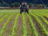Urkunde: Meisterpreis für Landwirte