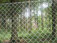Rischgau: Die Tage auf dem Lerchenberg sind gezählt