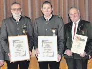 Vereinsleben: 48 Jahre im Frohsinn-Vorstand