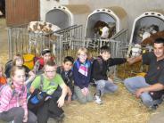 Otting: Erlebnis Bauernhof – alles um die Kuh