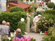 Wemding: Einblicke in Nachbars Garten