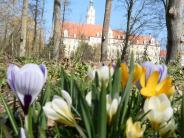 Leserfoto der Woche: Frühlingserwachen in Donauwörth