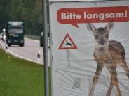 Donau-Ries-Kreis: Wenn Liebe blind macht