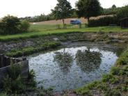 Tagmersheim-Blossenau: Was auf die Blossenauer zukommt