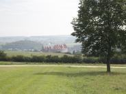 Landkreis Donau-Ries: Droht ein Insektensterben in der Region?