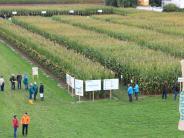 Landwirtschaft: Maisschau lockt die Besucher
