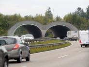 Verkehr: B2: Fünf Unfälle in wenigen Minuten