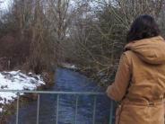: Neue Brücke über den Hagenbach