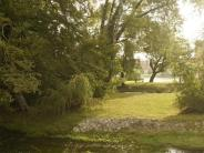 Gemeinderat: Merching fällt Bäume