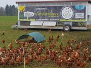 Schmiechen: Wanderhühner reisen in einem mobilen Stall