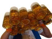 Polizei: Handfester Streit auf dem Merchinger Starkbierfest