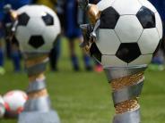 Jugend-Fußball: Dasing freut sich auf 50 Mannschaften