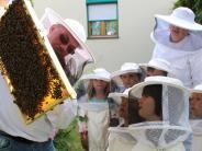 Kissing: Vorschulkinder lösen das Honig-Rätsel