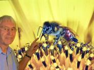 "Natur: Günther Peschke filmt Bienen in 3 D und ""hautnah"""
