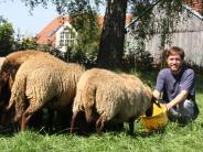 Sommergespräch: Landwirte müssen ihre Nische finden