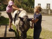 Steinach: Sanfte Pferde wirken bei der Therapie in Steinach