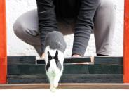 Freizeit: Hoppeln als Hochleistungssport
