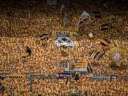 DFB-Sportgericht: Verhandlung über Dresdner Bullenkopf-Wurf