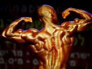 Kraftsport: Muskeltraining auch für Organe wichtig