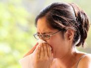 Gesundheit: Allergiker sind medizinisch unterversorgt