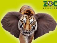 Zoo Augsburg: Ein tierisches Vergnügen