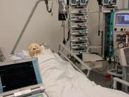 Medizin: Ein Plus für die Patienten