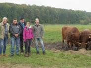 Projekt: Vom Kiesabbau zur Weide