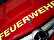 Burgau: Hecke brennt auf 20 Metern