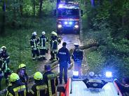 Unwetter in der Region: Radlerin wird von Baum getroffen und schwer verletzt