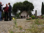 Bauausschuss: Wenn der Friedhof langsam zuwuchert