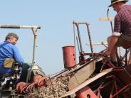 Kreis Günzburg: Feldarbeit, wie sie früher einmal war