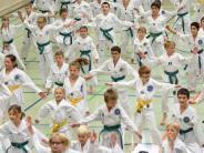 Kampfsport: 900 Kampfsportler trainieren gemeinsam in Krumbach
