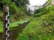 Leipheim: Brauchtdie Stadteinen neuen Hochwasserschutz?