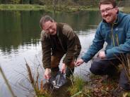 Jettingen-Scheppach: Neue Bewohner im Ochsenweiher