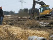 Obenhausen: Hier entsteht ein Schlaraffenland für Piepmätze
