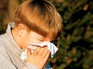Landkreis: Achtung, die Pollen fliegen wieder