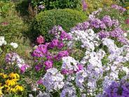 Landkreis Unterallgäu: Garten: Alternativen zum Grau