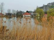 Buch: Damm am Mühlenweiher in Nordholz wird saniert