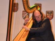 Illertissen: Die vielen Facetten einer Harfe