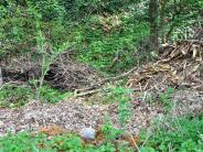 Kettershausen: Dieser Hang ist kein Abfalllager