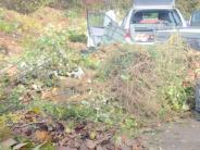 : Gartenabfälle werden abgeholt