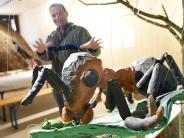 Roggenburg: Die große Welt der kleinen Tiere