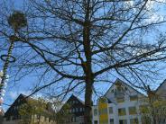Senden: Buntes für Bäume